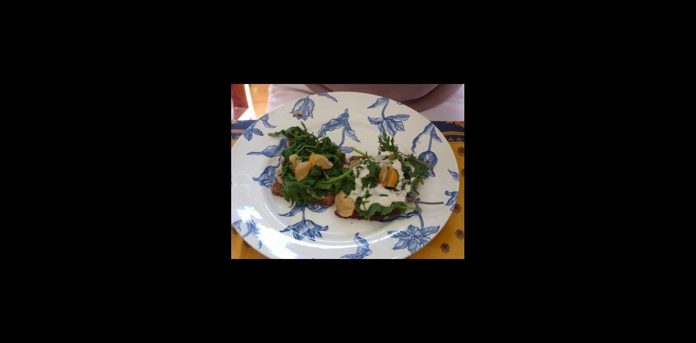 Kale-for-Web.jpg