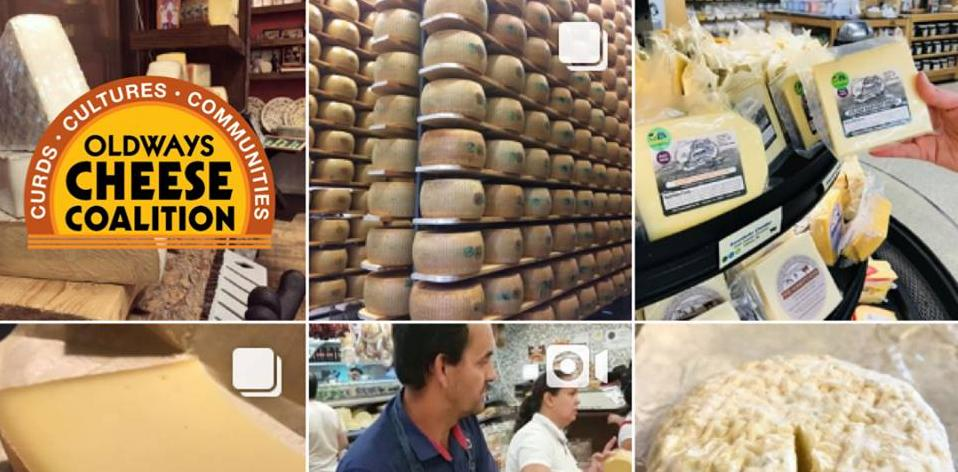 Raw Cheese Day Collage.jpg