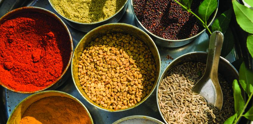 assorted colorful spices