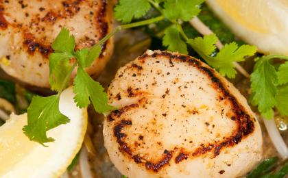 Seared Scalloops Gremolata