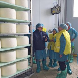Italian Cheese Culinaria 18_Igor Gorgonzola