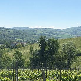 Emilia Romagna-14.JPG