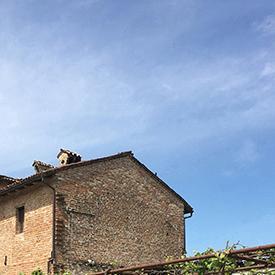 Emilia Romagna-2.JPG