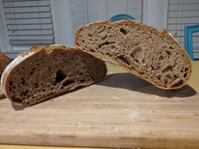 rustic loaf of whole wheat bread cut open at the center to reveal the crumb