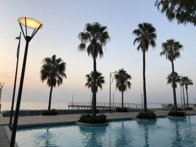 Limassol_PalmTrees.jpg