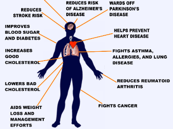 Med Diet and Health