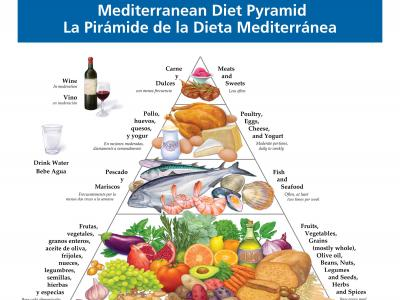 Revised Med_pyramid_flyer_English-Spainish.jpg