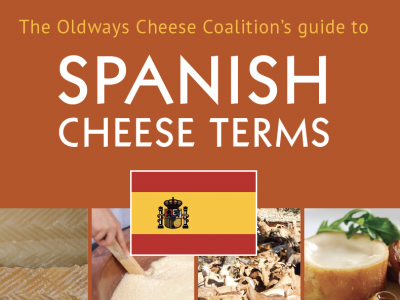 Guide to Spanish Cheese Terms