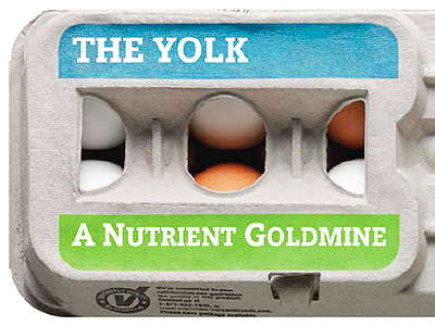The Yolk: A Nutrient Goldmine