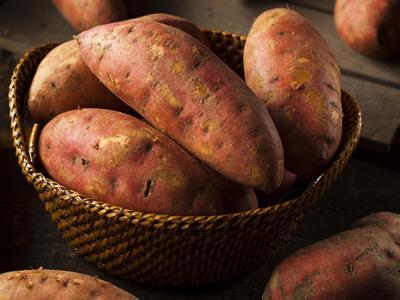 sweet_potato_top.jpg