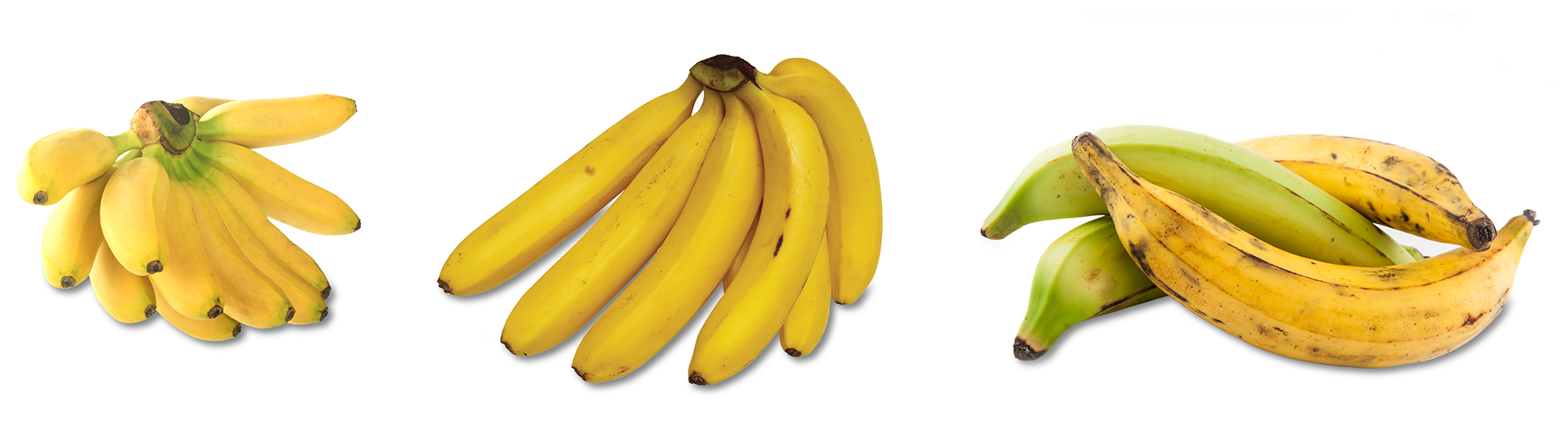 7-1_AssortedBananas.jpg