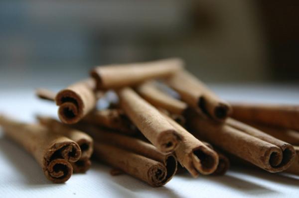 CinnamonFORWEB.jpg