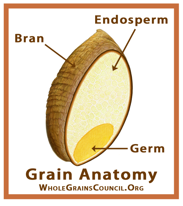 GrainParts 2x2 WGC.jpg