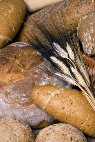 LuckyOliver-1028915-blog-assorted Bread With Wheat.jpg