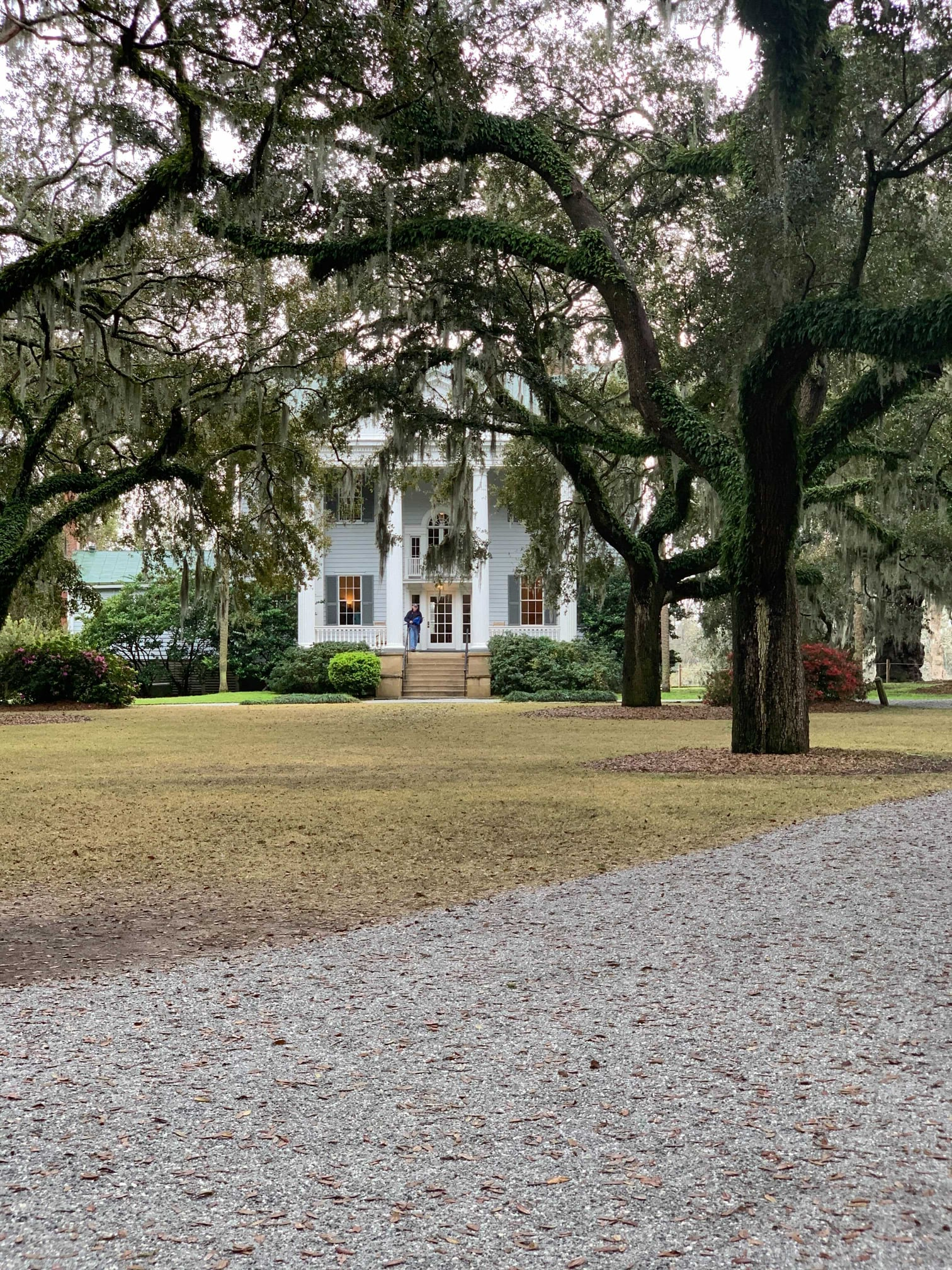 McLeod plantation photo