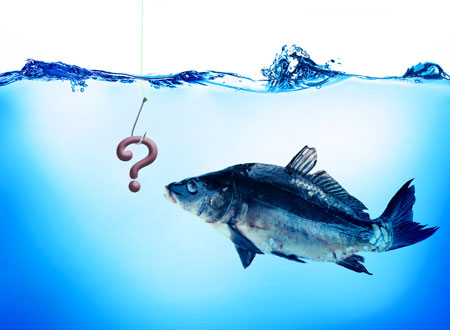 Question mark on hook with fish