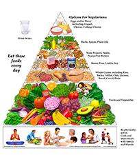 OVN-DietPyramid.jpg
