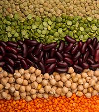OVN-beans.jpg