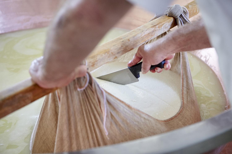 Parmigiano_Reggiano_bowl 7.jpg