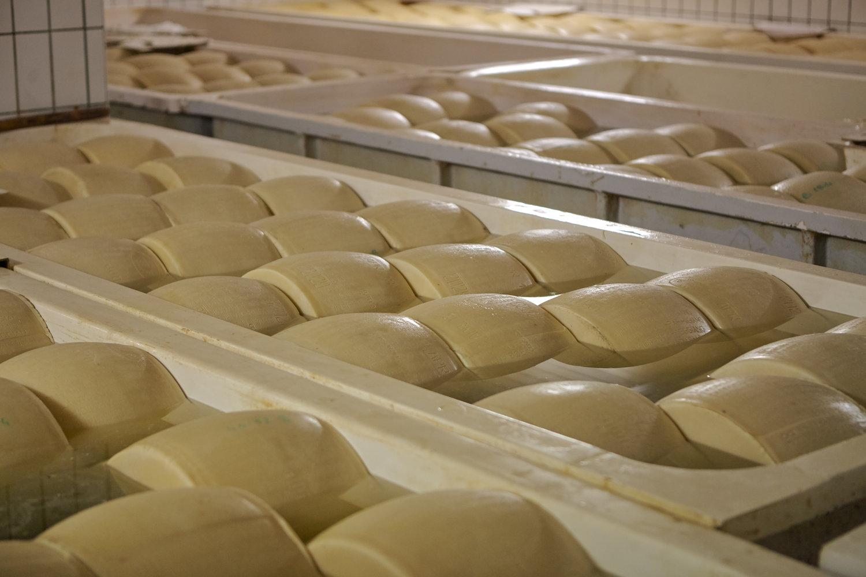 Parmigiano_Reggiano_bowl 8.jpg
