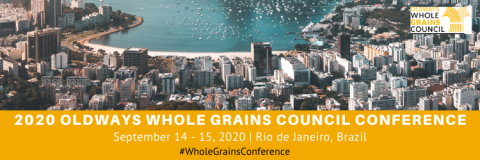 Rio_WGC_Conference Banner (1).png