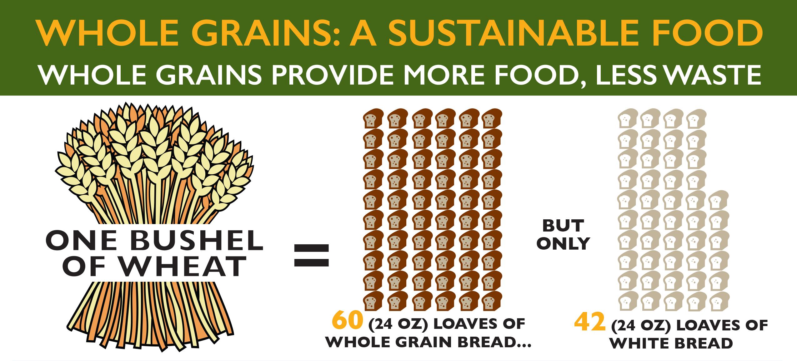 WG_SustainableFood_infographic-1.jpg
