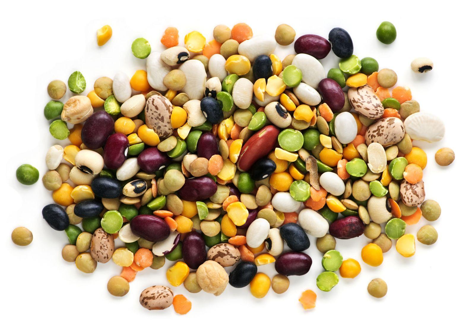 IStock 000013069313 Beans.jpg