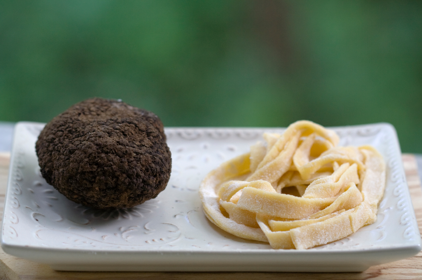 truffle and pasta on a white plate from Umbria, Italy