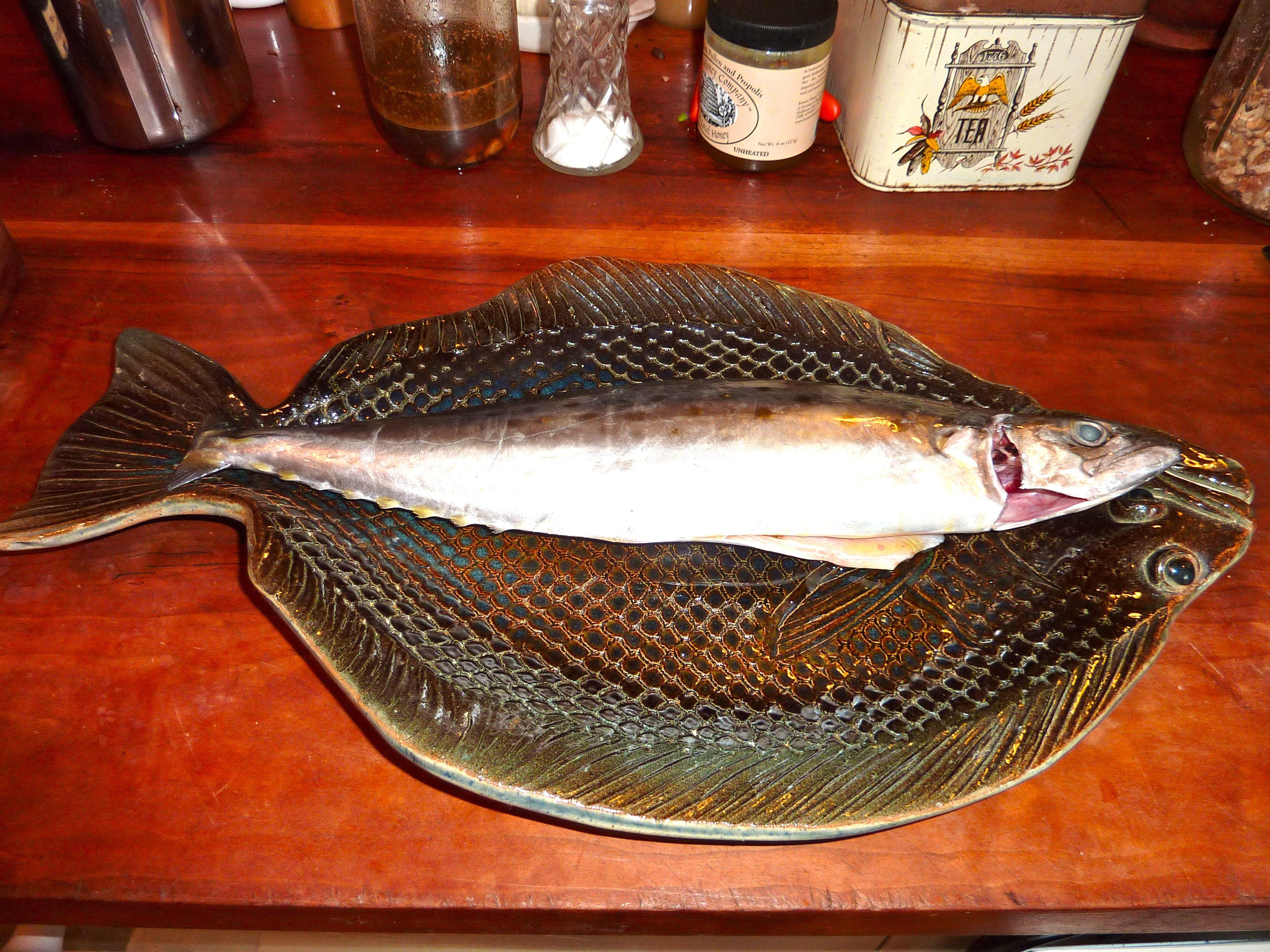 Macfish1.jpg